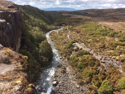 Taranaki Falls walking track, Tongariro National Park