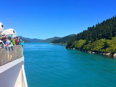 Crossing the Cook Strait on the Interislander Ferry - MoaTrek Small Group Tours