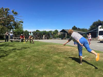 Cricket on the lawn at the Marlborough winery