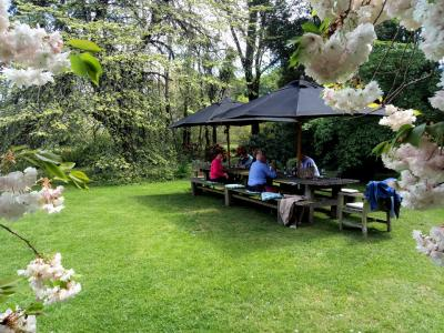 Outdoor lunch amongst spring flowers, Akaunui Homestead Cantebury