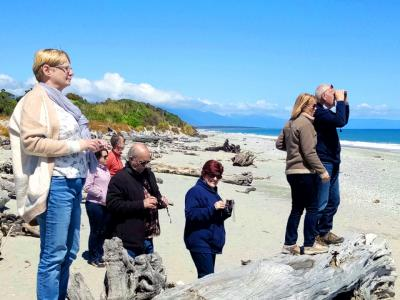 Looking out to sea on NZ West Coast Beach - MoaTrek Small Group Tours