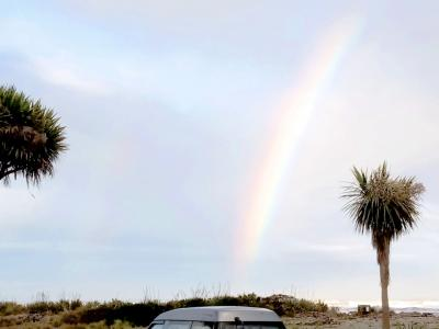 Rainbow above the Nikau Palm trees, Punakaiki beach, West Coast