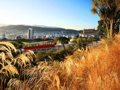 Wellington Cable Car and Tussock Grass