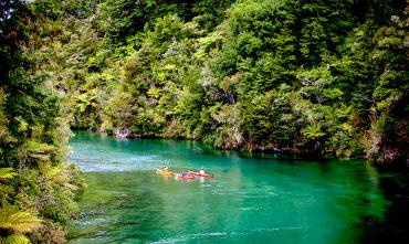 Kayakers in the forest channel - Abel Tasman National Park Tours