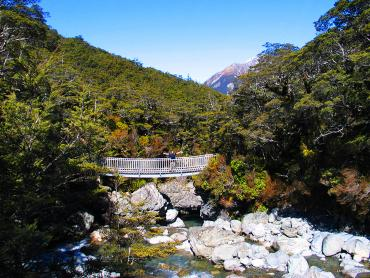 Walker on the bridge above the Bealey River - Arthurs Pass Tours