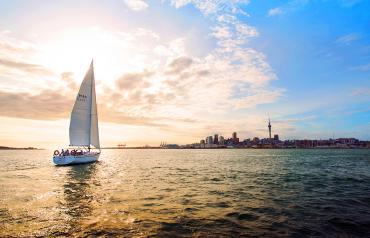 Twilight sailing on Auckland harbour - Boat trips and day cruises NZ