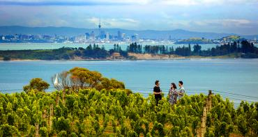 Wine tasting amongst the vines with views of Auckland city in the distance, Waiheke Island - NZ North Island Itinerary