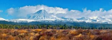 Snowy peak and tussock land - Tongariro National Park Tours