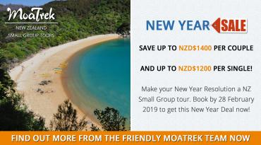 MoaTrek New Year Sale!