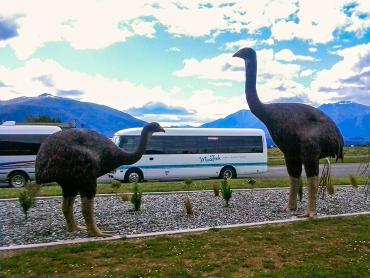 Life sized Moa statues and the MoaTrek coach