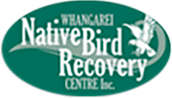 Native Bird Recovery Centre Logo